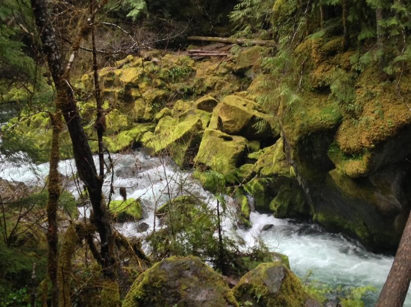 4-15-18 toketee falls (118)