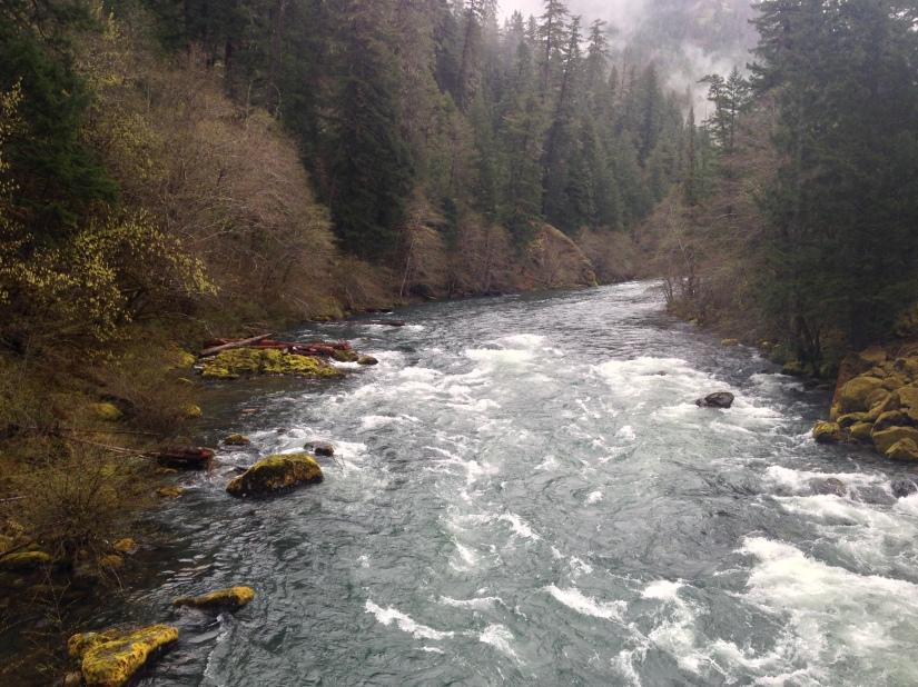 umpqua river 4-15-18 (1)