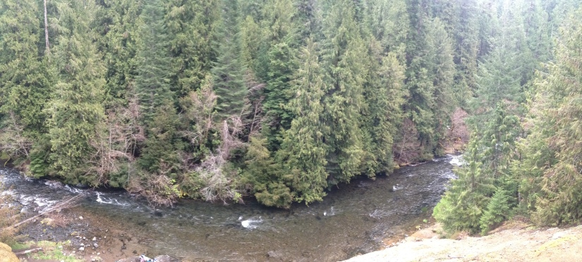 Umpqua River from hot springs (2)